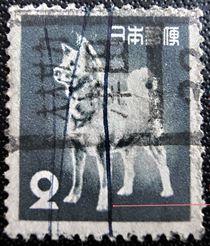 旧アキタ犬カタカナローラー印