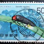 自然保護蛍鉄道郵便印