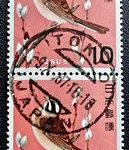 鳥ホオジロ三日月欧文印
