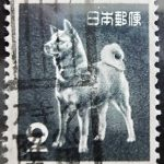 旧アキタ犬カタカタローラー