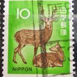 ニホンジカ10円試行ローラー厚別局