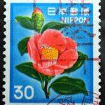 ツバキ30円トビ色選挙機械印