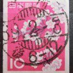 ソメイヨシノコイル昭和39年櫛型印