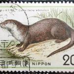 自然保護カワウソ年賀機械印