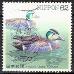 水辺の鳥トモエガモの新波唐草エラー機械印